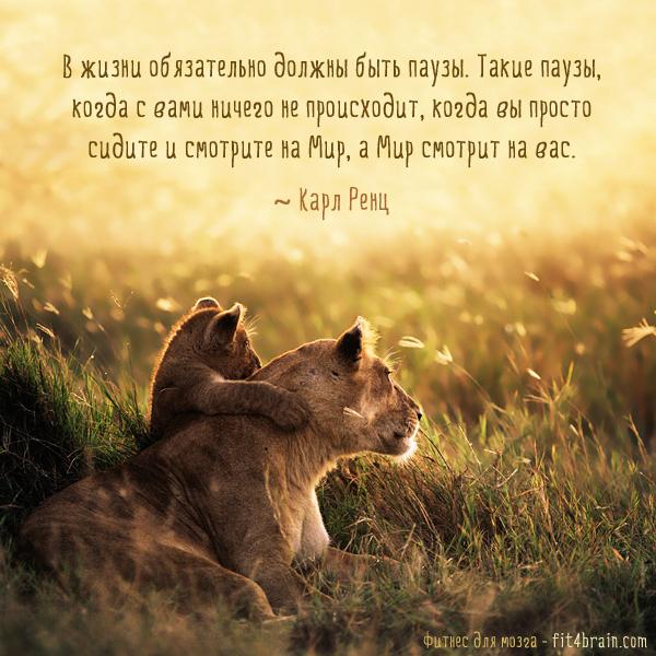 Притчи о смысле жизни человека