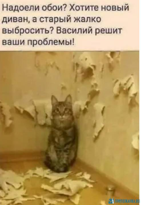 https://prihozhanka.ru/pic/57017.jpg