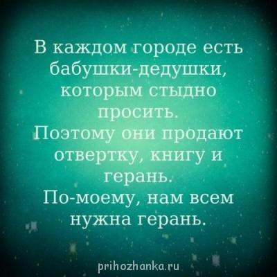 Из ВКонтактика с приветиком  - w0lPL0MyI9M.jpg
