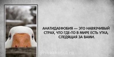 Из ВКонтактика с приветиком  - ккк.jpg
