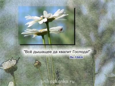 Из ВКонтактика с приветиком  - R6H-bf5nK-c.jpg
