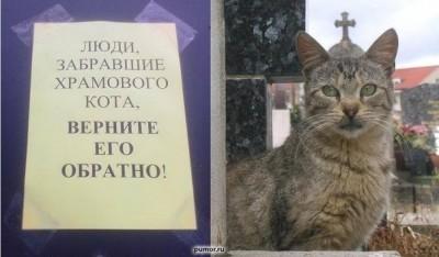 Из ВКонтактика с приветиком  - aaKeaX01YrY.jpg