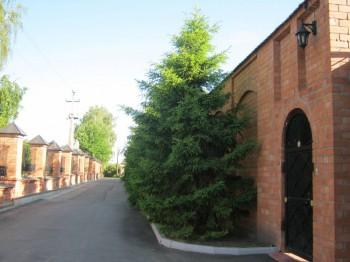 Покровский женский монастырь в Москве - IMG_0908.JPG