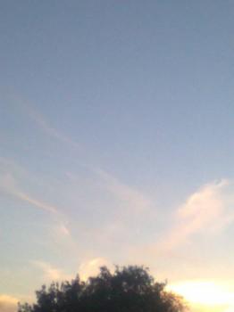закат. Облака были похожи на крылья Ангела. - Фото0140.jpg