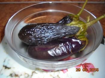 День второй. Овощи на столе-здоровья на сто лет. - DSC02135.JPG