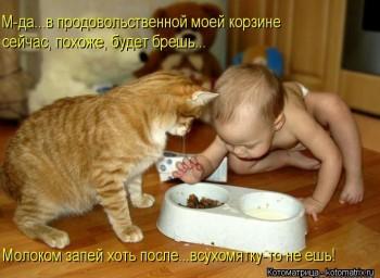 Cмешное из жизни животных. Фото и видео из интернета. - image.jpg