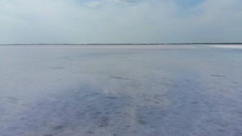 Бурлинское озеро розовое озеро Алтайский край. - 4.jpg