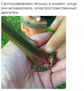 Из ВКонтактика с приветиком  - 1540442882.jpg