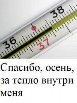 Из ВКонтактика с приветиком  - 1543342349.jpg