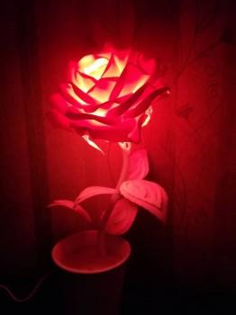 Рукотворные цветы в интерьере. - IMG_20181123_184121.jpg