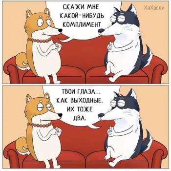 Из ВКонтактика с приветиком  - 1543926596.jpg