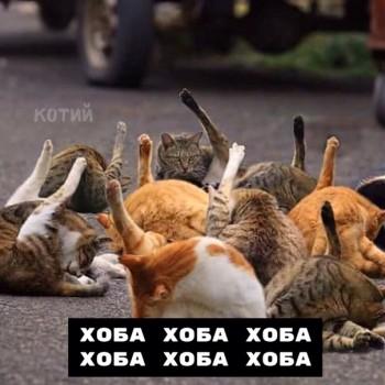 Из ВКонтактика с приветиком  - 1563957315.jpg