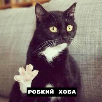 Из ВКонтактика с приветиком  - 1563957312.jpg
