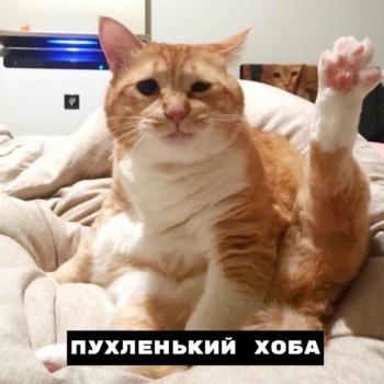 Из ВКонтактика с приветиком  - 1563957301.jpg