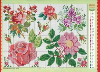 Цветы. Схемы вышивки - 17.jpg